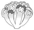 Maijima Mascot.PNG