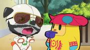 Wanda on beard and sunglasses with Zuzumin