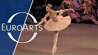Tchaikovsky - The Nutcracker, Ballet in two acts Mariinsky Theatre (HD 1080p)