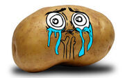 Potato-meme-ENG-lucky-320x200