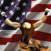 82348-eagle-biceps-murica-meme-europ-dbmv