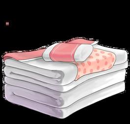 Futon and pillow