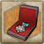 Item Icon Medal