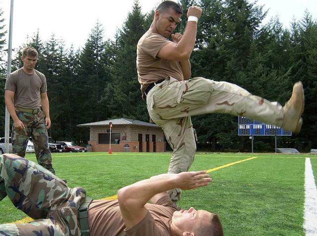 File:Self-defense.jpg