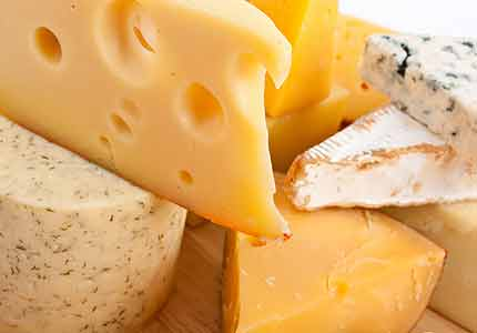 File:Cheese mites430x300.jpg