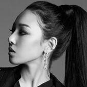 RM-Somin BK members