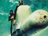 Human Torpedo