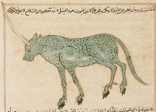 File:Al-Qazwini Karkadann Sarre manuscript.png