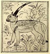 Shadhahvar Berlin manuscript
