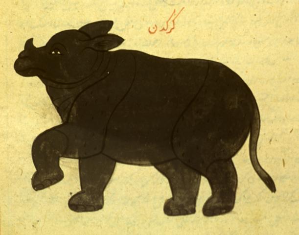 File:Karkadann National Library of Medicine MS P 2.PNG