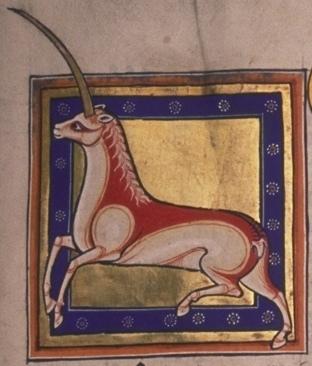 File:Aberdeen Bestiary Monoceros.jpg