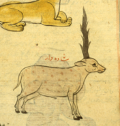 Shadhahvar National Library of Medicine MS P 2
