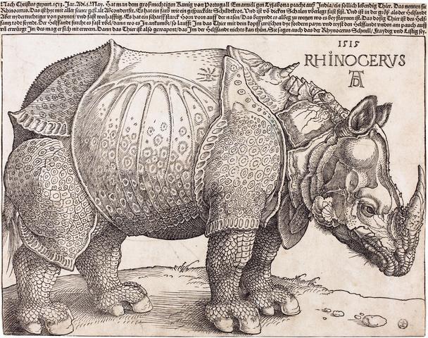 File:The Rhinoceros (NGA 1964.8.697) enhanced.png