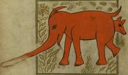 Sinad Walters manuscript