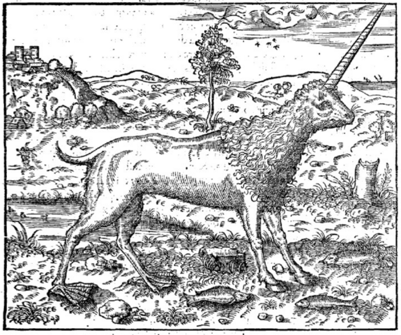 File:Andre Thevet Cosmographie Universelle Camphruch.png