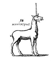 Topologia Christiana Monoceros