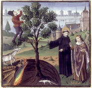 Barlaam & Ioasaph - Allegory of the man in the tree Vincentius Bellovacensis