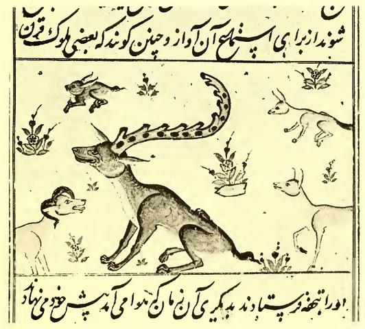 File:Shadhavar Batty manuscript.png