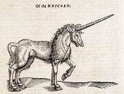 Edward Topsell The history of four-footed beasts Unicorn
