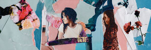 Liar banner - CamilaAccess on Instagram