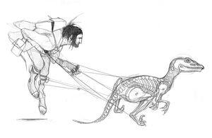 Velociraptor! Song