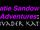 Katie Sandow's Adventures: Invader Katie