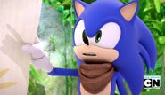 Sonic explains about amy and him for a date