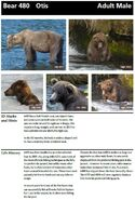 OTIS 480 INFO 2014 BoBr PAGE 22