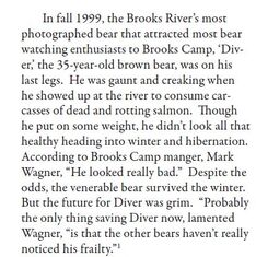 DIVER 1 INFO 1999 FROM AT THE HEART OF KATMAI