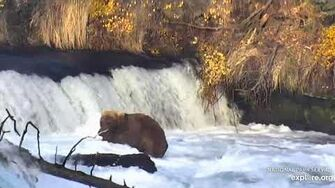 907 at the falls 10 15 2019, video by Lani H