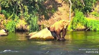 7 Jul 2019 908 Gets a Drink, video by mckate