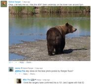 INFO BEARS SEEN 2018.06.01 17.00 151 WALKER RANGER RUSS PHOTO MIKE FITZ AGREES w 151 ID per 2018.06.04 08.37 COMMENT