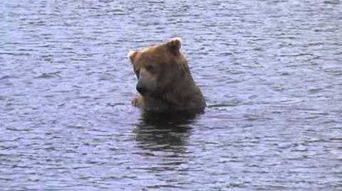 Alaska 2012.07