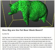 HOW BIG ARE THE FAT BEAR WEEK BEARS MIKE FITZ EXPLORE BLOG GIS TEAM 3D SCANS 2019.10.11 32 151 480 747 854 01