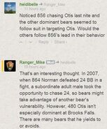 NORMAN 864 INFO 2007.xx.xx RANGER MIKE 2014.07.14 COMMENT re ANOTHER ADULT MALE CHASED 24 AFTER 864 24 FIGHT