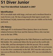 DIVER JR 51 INFO 2017 BoBr PAGE 65 INFO ONLY
