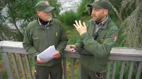 07.23.2018 - People and Bears - Live Chat with Rangers Andrew and Russ by Brenda D