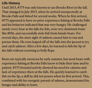 LEFTY 775 INFO 2017 BoBr PAGE 79 LIFE HISTORY PART 1 of 2 ONLY
