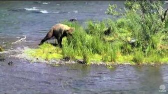 5?? 6-28-16 274 Overflow comes through the falls Katmai National Park and Explore by Mickey Williams