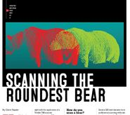 SCANNING THE ROUNDEST BEAR CLAIRE NAPIER ARTICLE 32 151 480 747 854 01