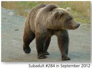ELECTRA 284 PIC 2012.09.xx NPS PHOTO 2015 BoBr PG 35 01