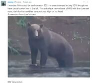 WHO SUBADULT MALE 2019.08.15 LIMPING RIGHT FRONT LEG 2020.01.04 COMMENTS 03