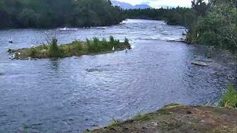 Brooks Falls Brown Bears Cam 07-22-2018 23 01 39 - 07-23-2018 00 01 40 Explore Recorder-0