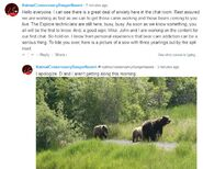 RANGER NAOMI COMMENT 2019.06.21 10.04 & 10.08 94 w 3 YEARLINGS MAYBE