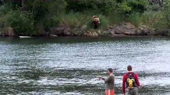 Curious bear eyes some anglers, video by MSO Belle, 6 29 2015 or prior