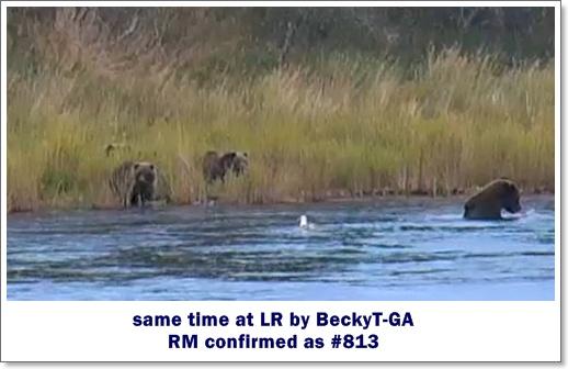 Becky TA 813 III