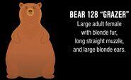 128 Grazer identification information from Mike Fitz's Meet Bear 128 Grazer video
