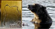 410 PIC 2015.09.04 KNP&P FB POST re 410 INSPRIATION FOR 2015 BROOKS CAMP BEAR ETIQUETTE PIN