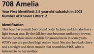 AMELIA 708 INFO 2018 BoBr PAGE 59 IDENTIFICATION ONLY