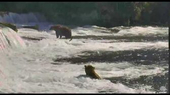 10;??am 063016 0tis in the jacuzzi Part 2 Katmai National Park and Explore by Mickey Williams